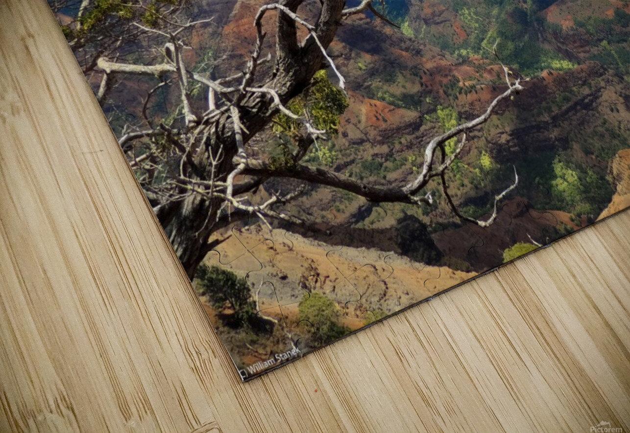 Wild Kauai 2 HD Sublimation Metal print