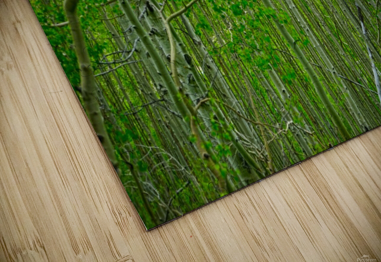 New Growth HD Sublimation Metal print