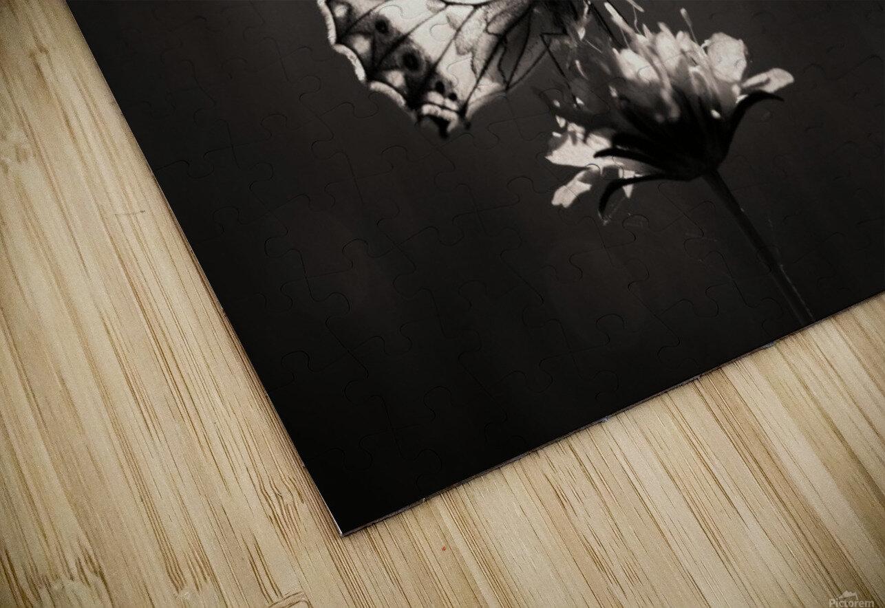 Medioluto norteA±a HD Sublimation Metal print