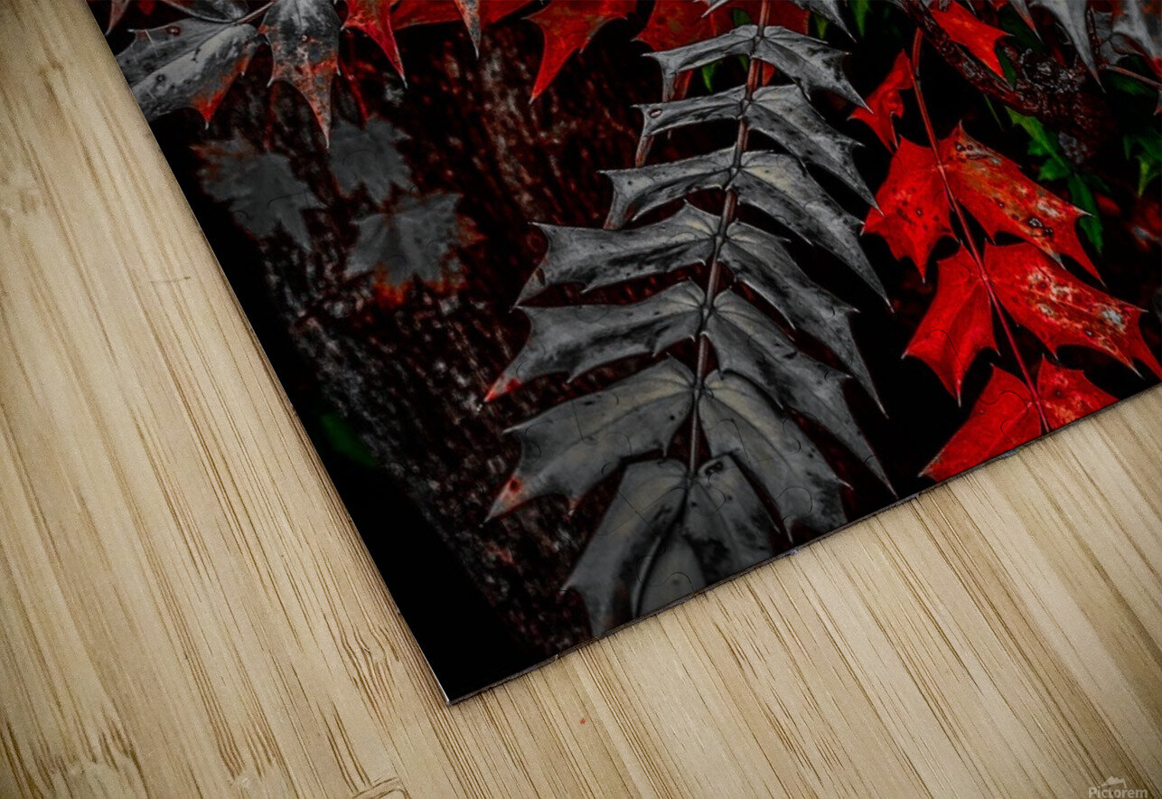 Holly Explosion HD Sublimation Metal print
