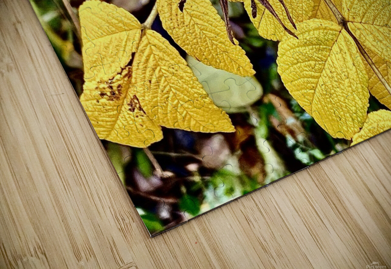 Two Red Berries HD Sublimation Metal print