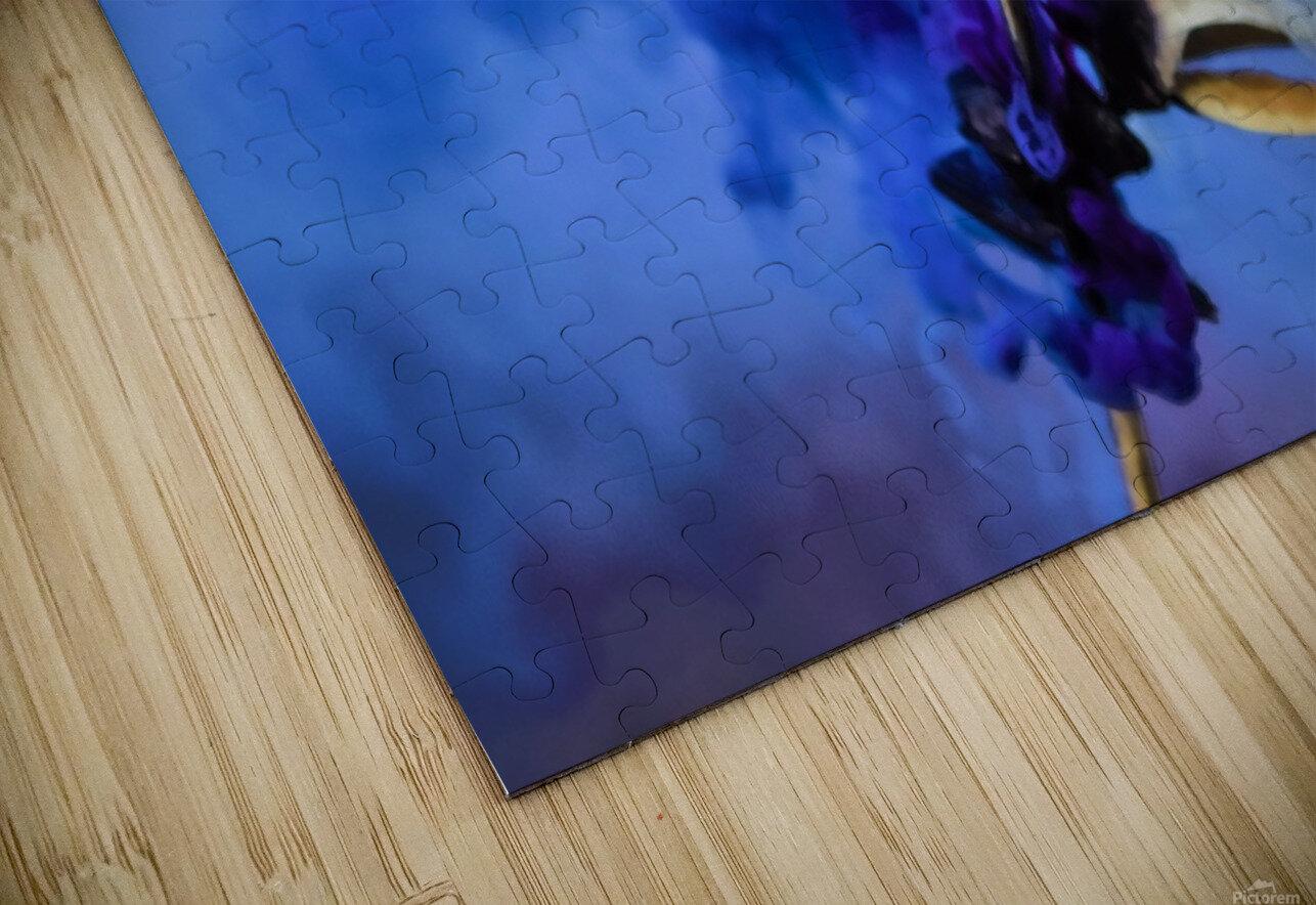 Folie HD Sublimation Metal print