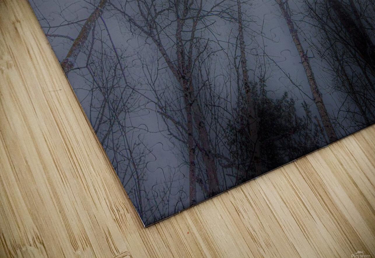 Espoir HD Sublimation Metal print