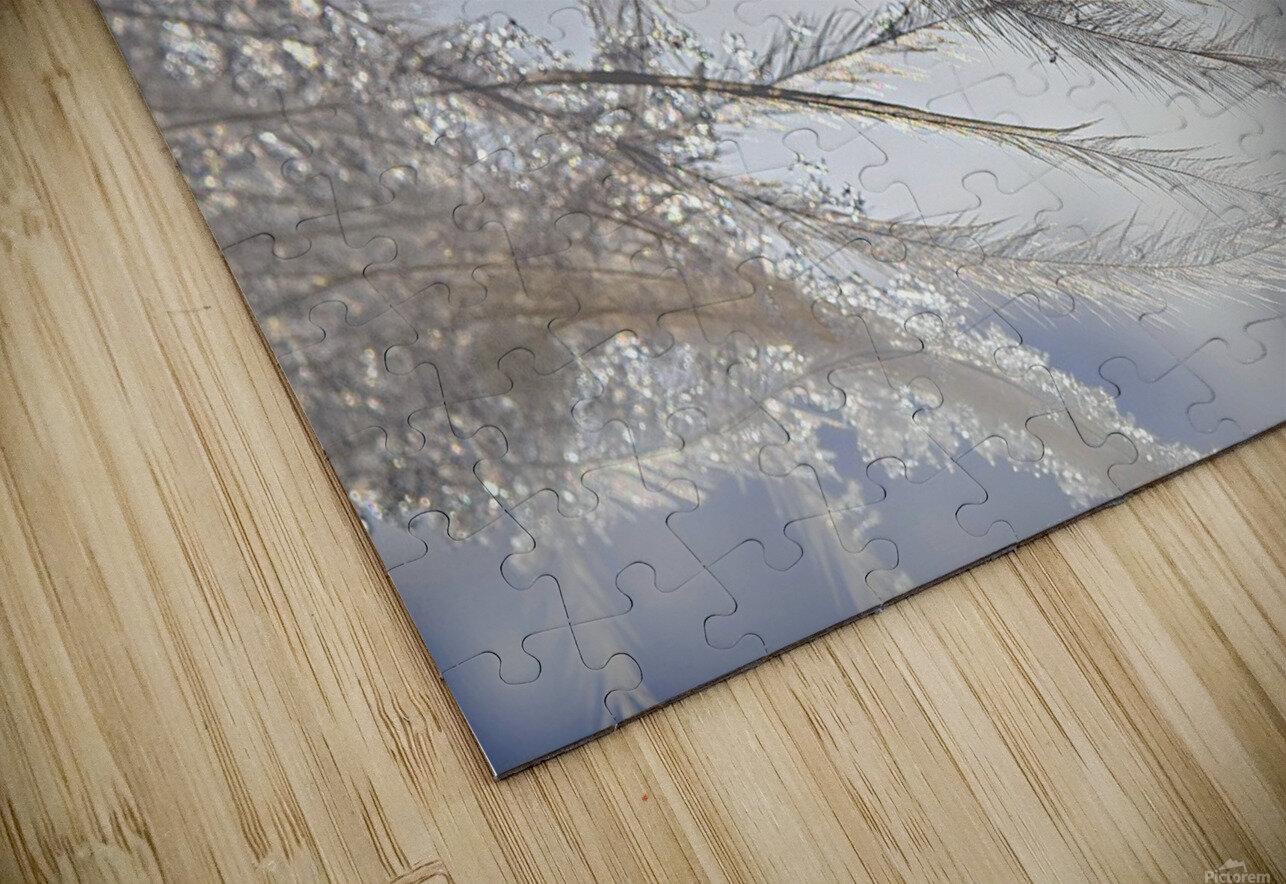 Plumeau HD Sublimation Metal print
