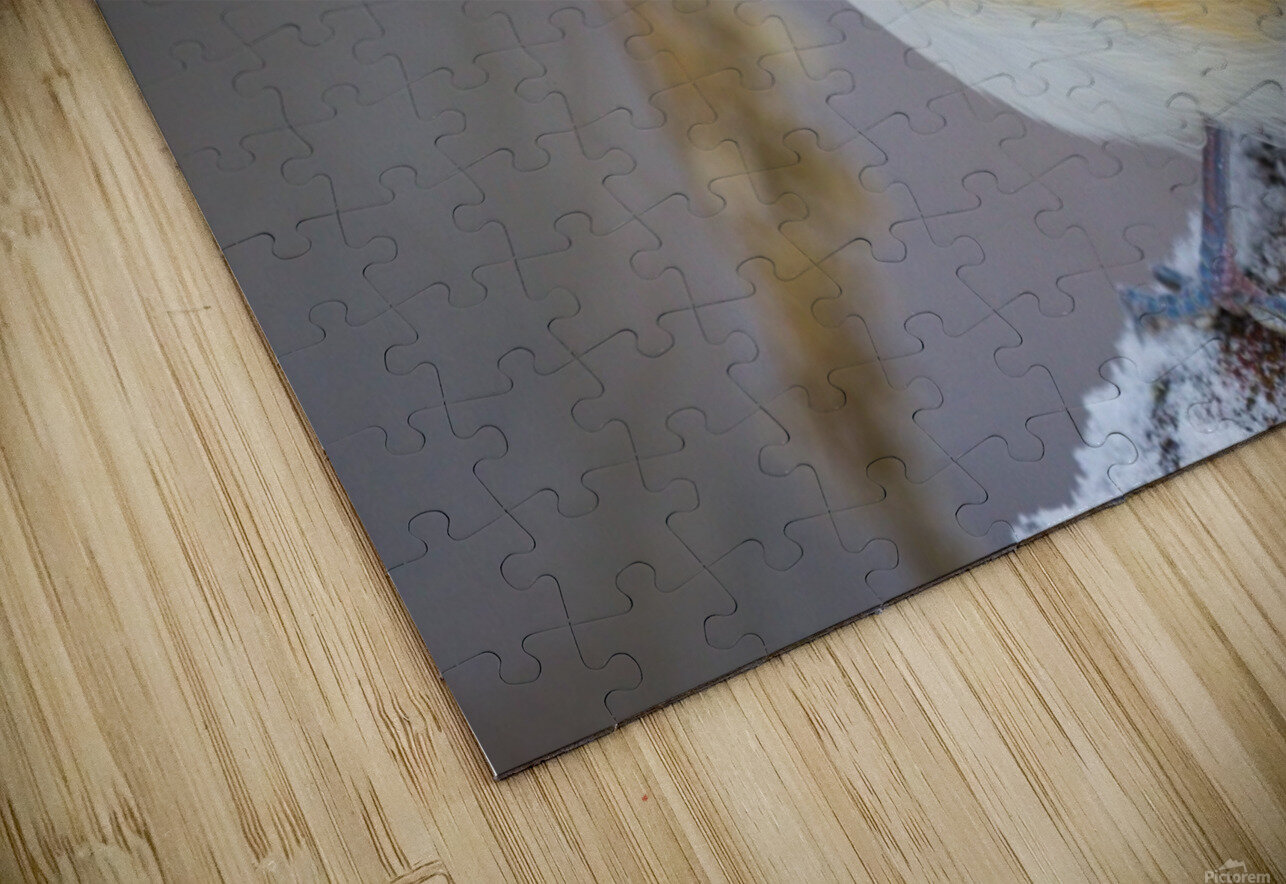 Titmouse ap 1818 HD Sublimation Metal print