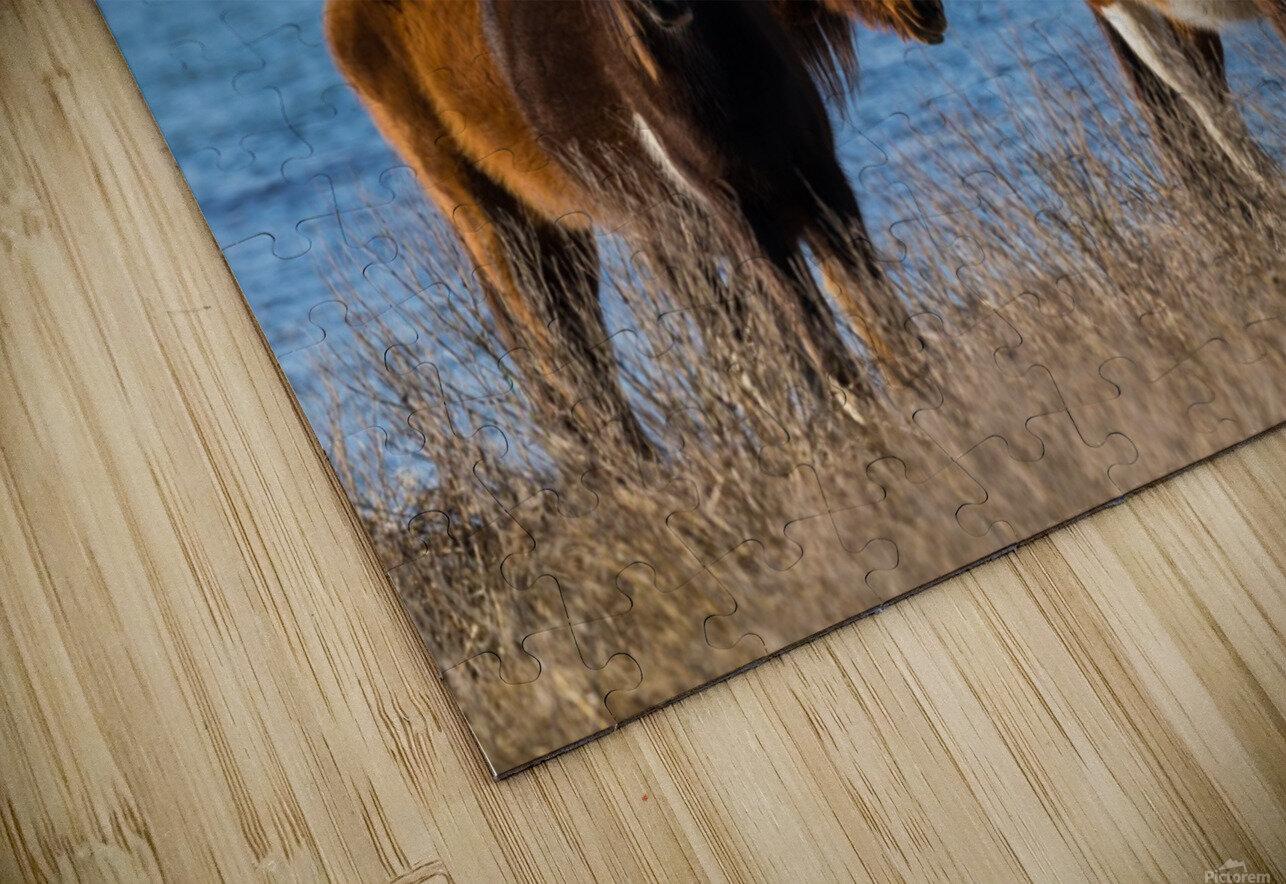 Wild Horses ap 2796 HD Sublimation Metal print