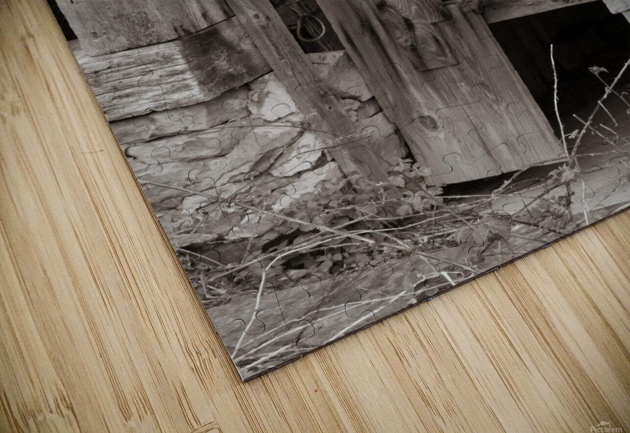 Hints Of Modern ap 1893 B&W HD Sublimation Metal print
