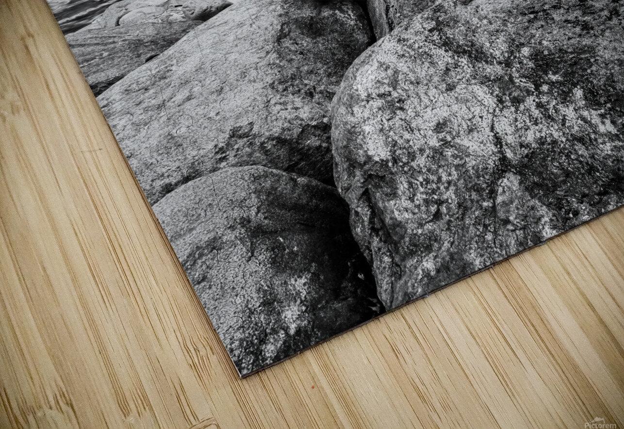 Train Bridge ap 2225 B&W HD Sublimation Metal print