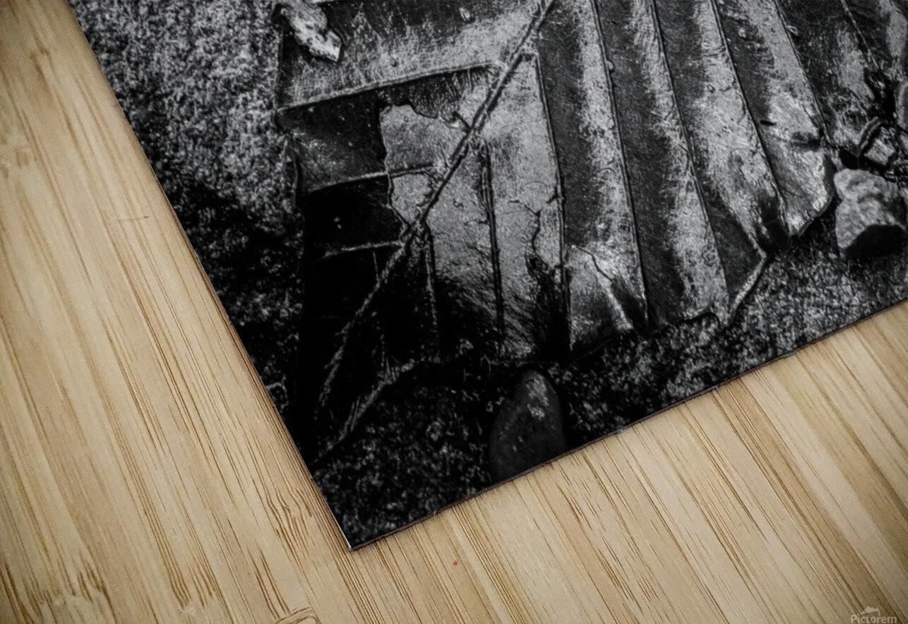 Leaf ap 1931 HD Sublimation Metal print