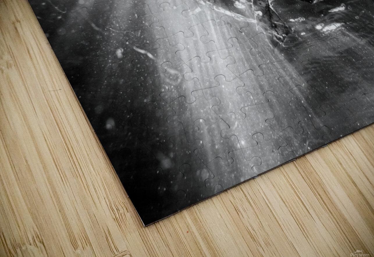 Sunlight ap 2048 B&W HD Sublimation Metal print