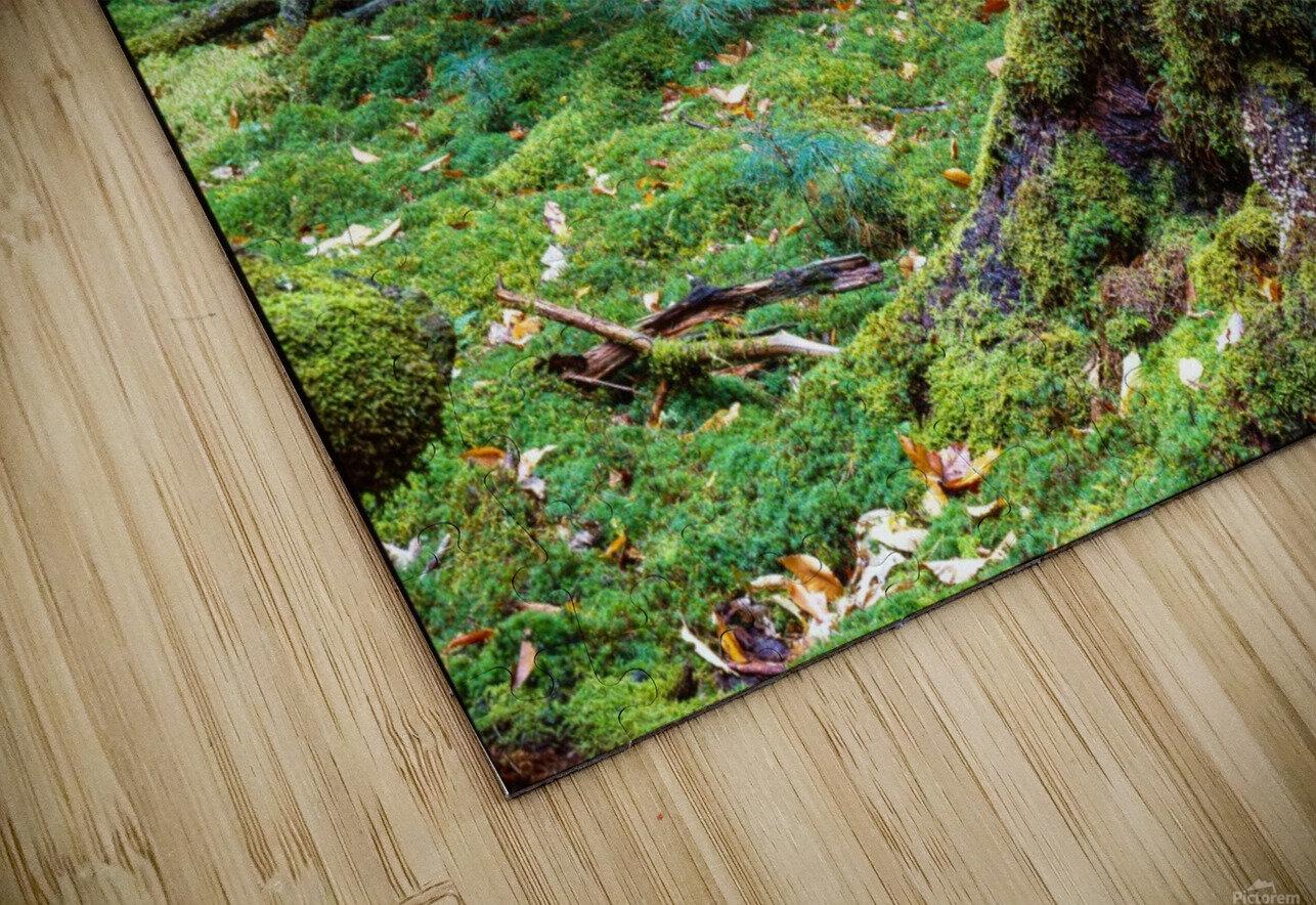 Fallen Giant ap 1513 HD Sublimation Metal print