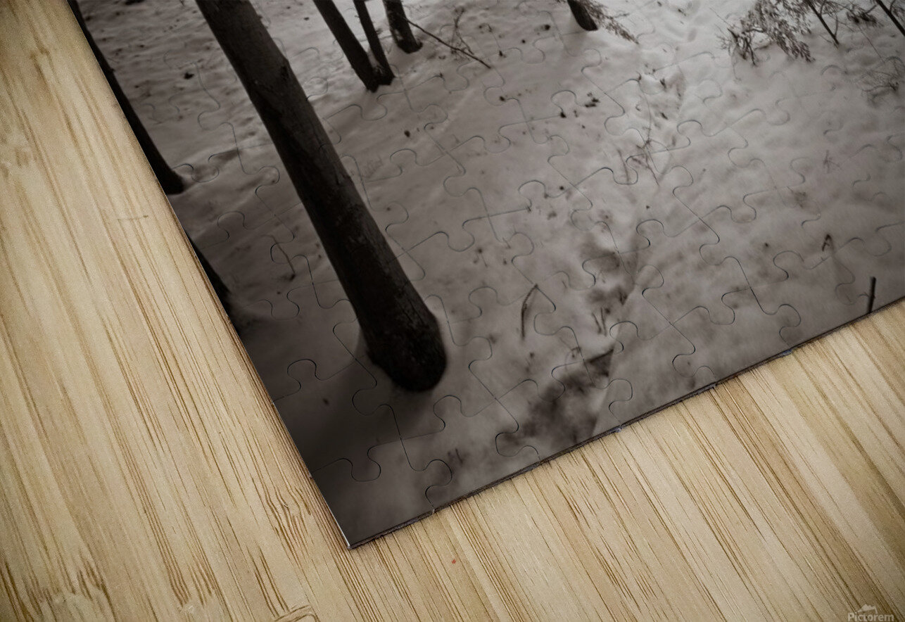 Sunlight ap 2731 B&W HD Sublimation Metal print