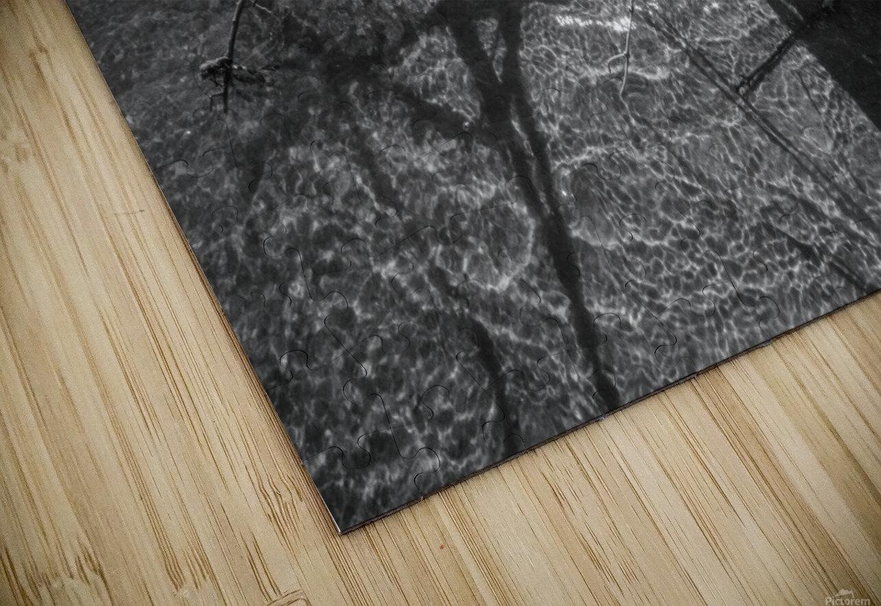 Sparkles ap 1595 B&W HD Sublimation Metal print