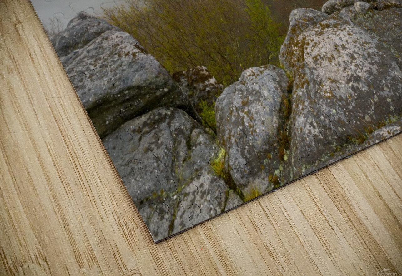 Low Ceiling ap 2945 HD Sublimation Metal print