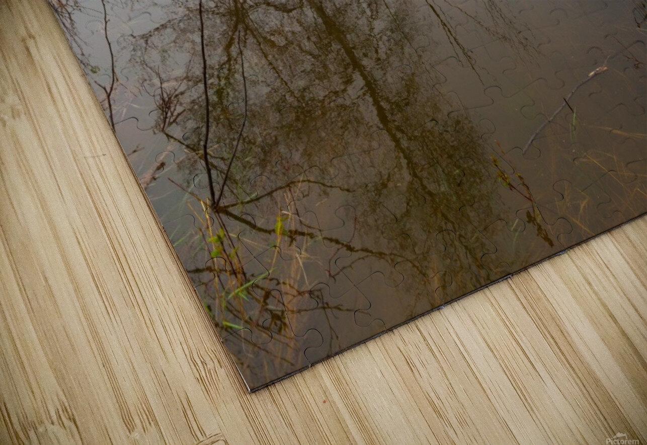 Beaver Pond ap 2357 HD Sublimation Metal print