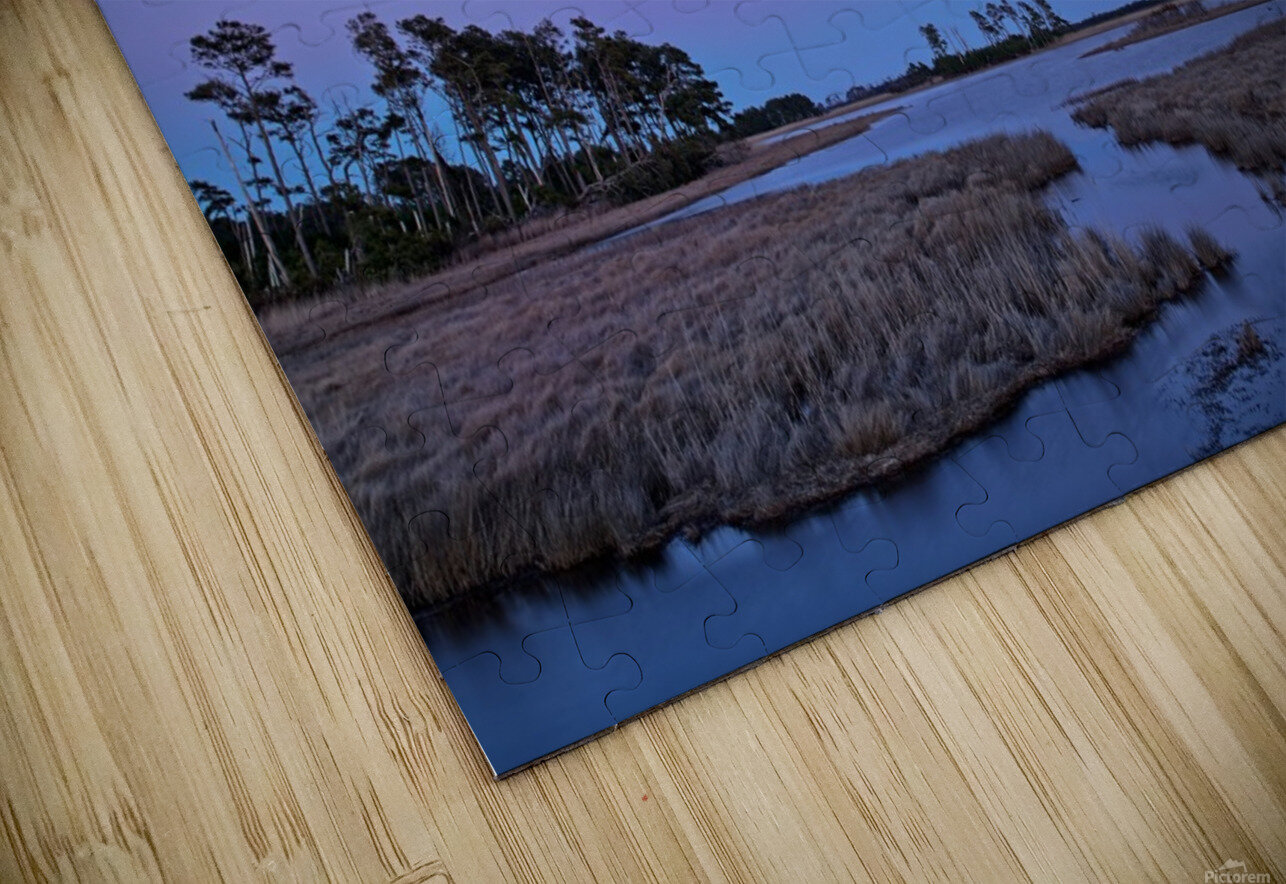 Twilight Shadow ap 2789 HD Sublimation Metal print