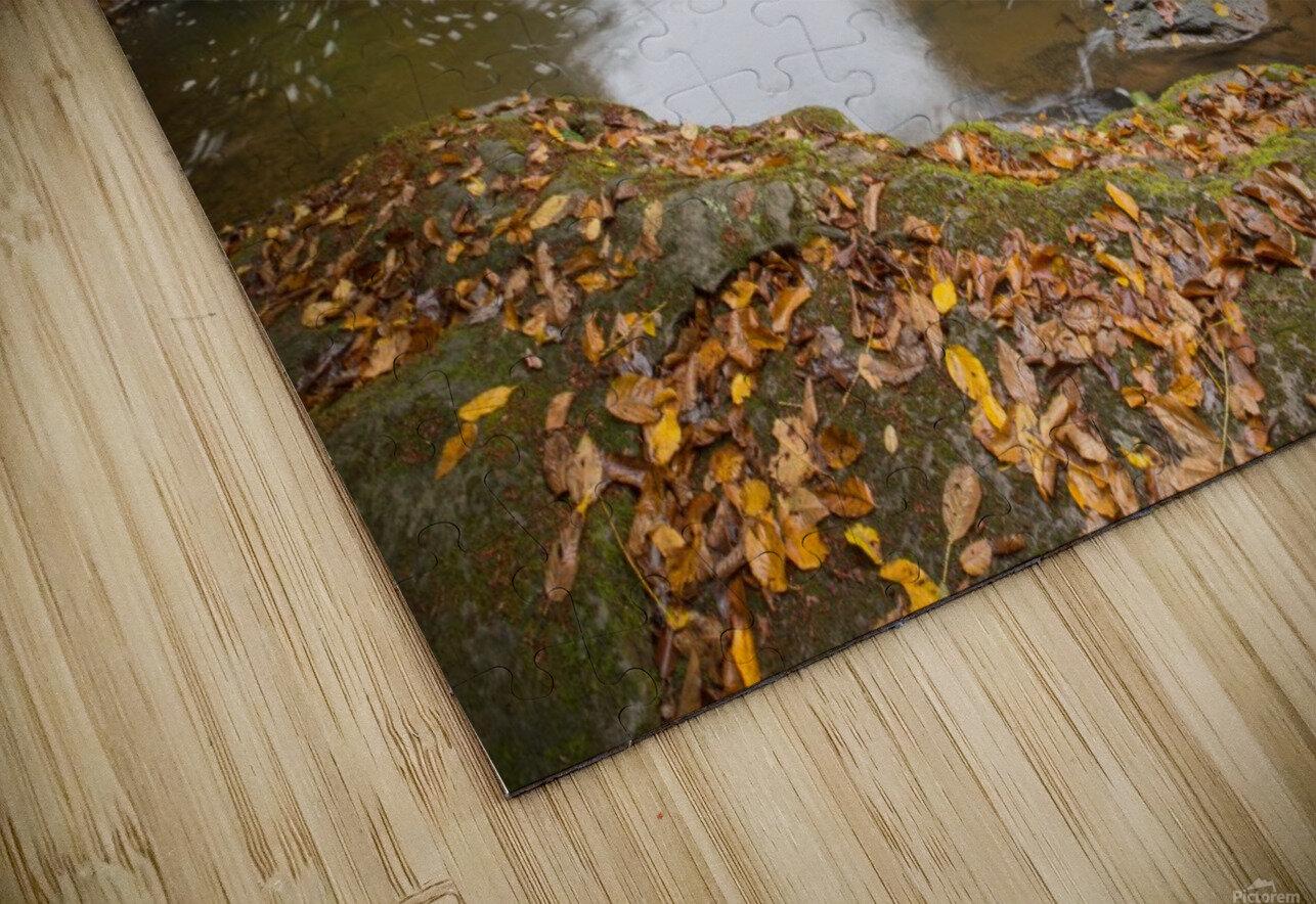 Fall Color ap 2453 HD Sublimation Metal print