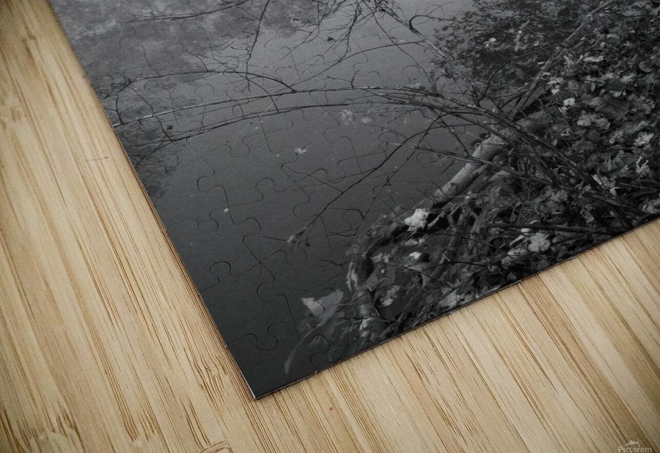 Morning Fog ap 1570 B&W HD Sublimation Metal print