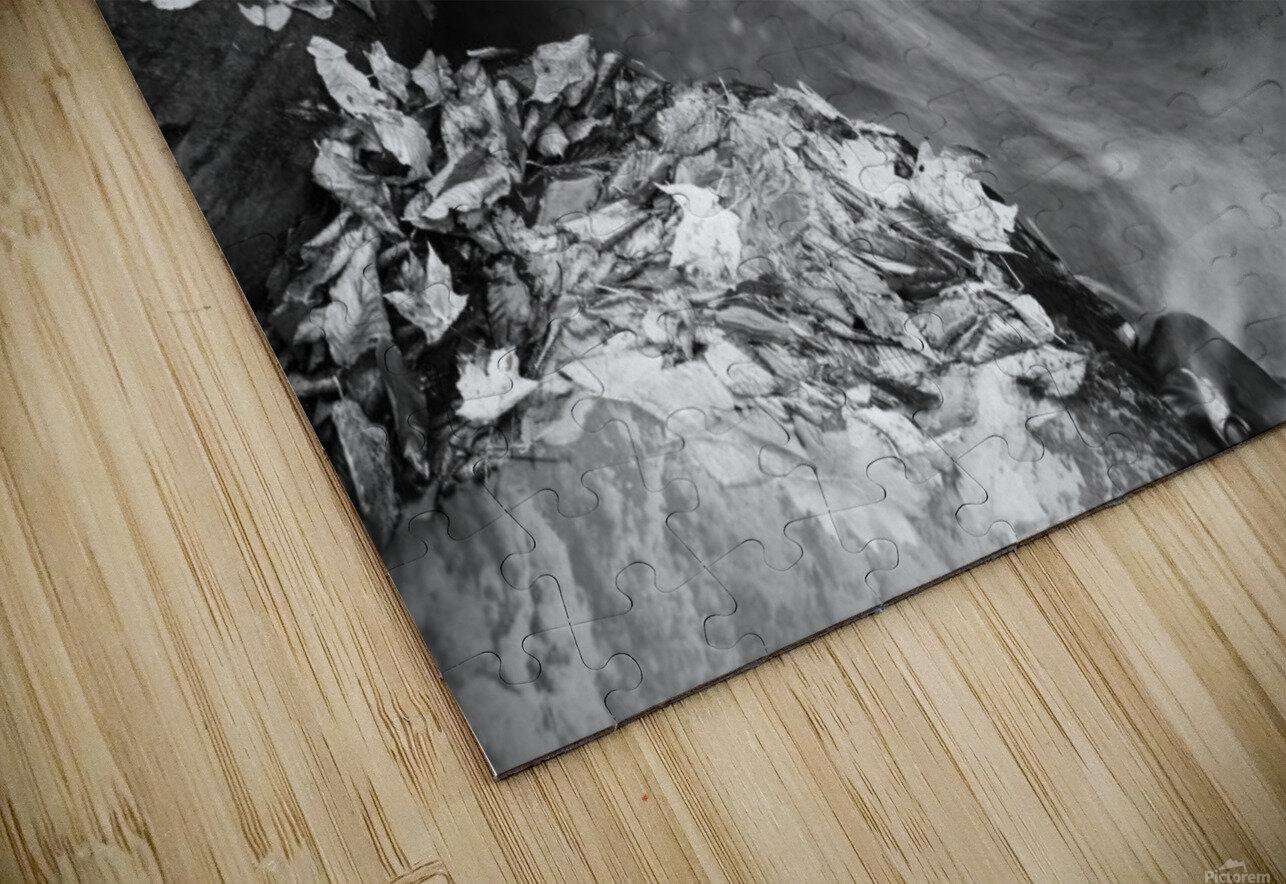 Roaring Run ap 1961 B&W HD Sublimation Metal print