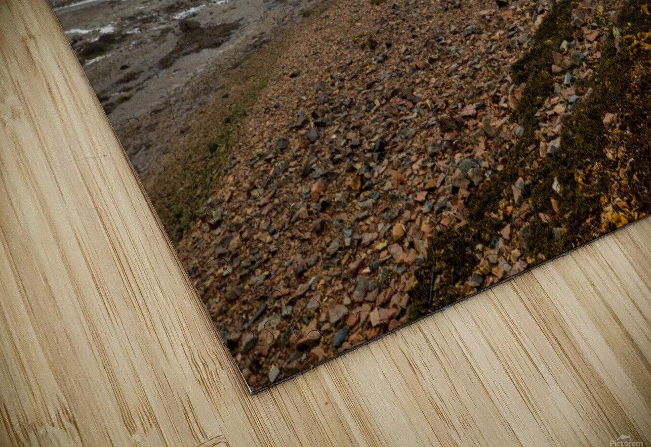 Low Tide ap 2296 HD Sublimation Metal print
