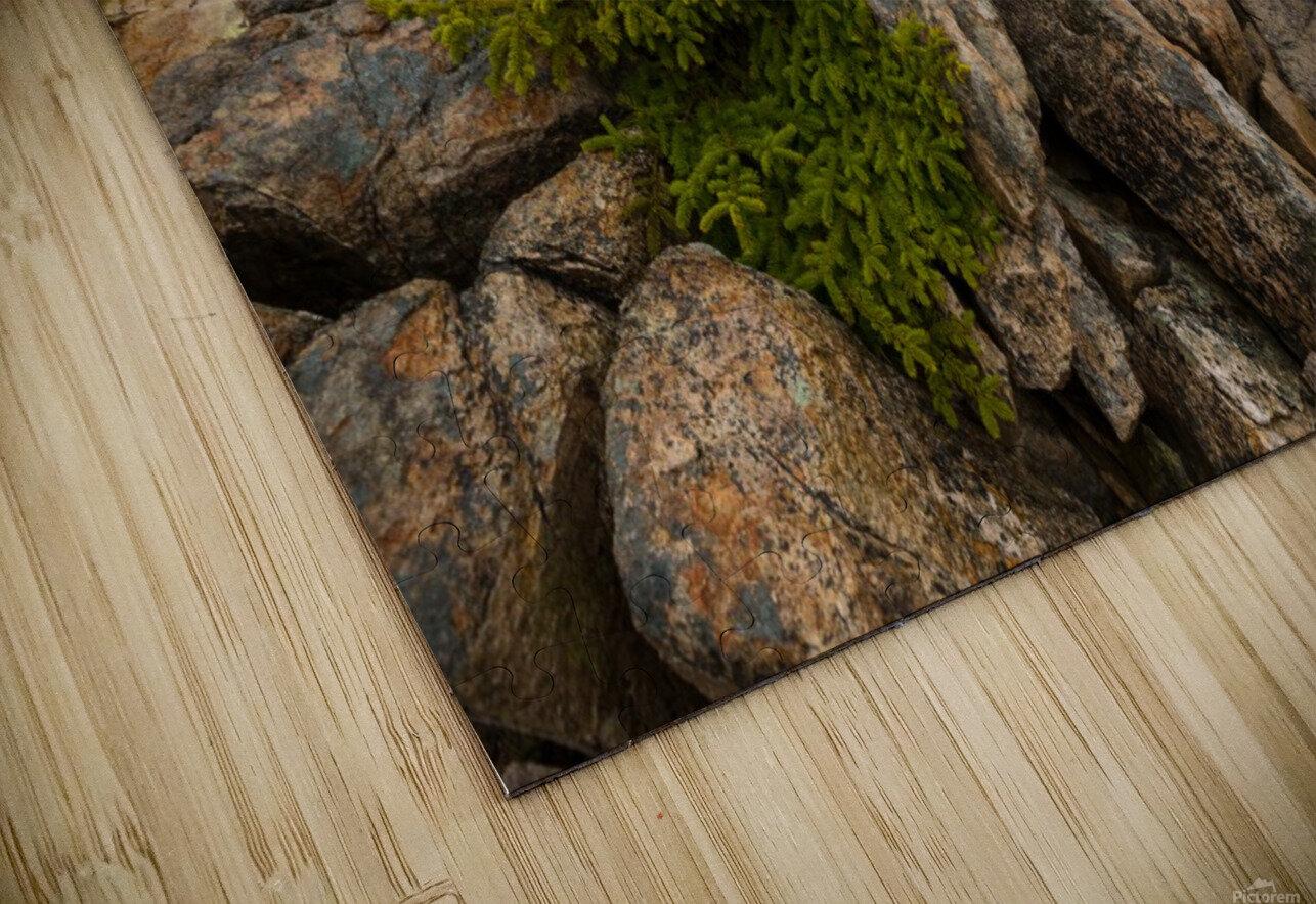 Lone Pine ap 2286 HD Sublimation Metal print
