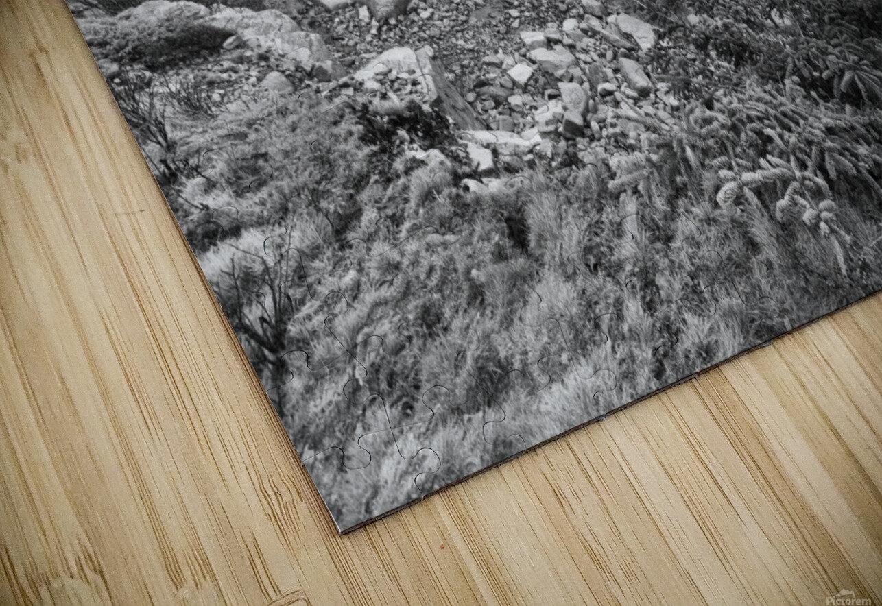 Lone Pine ap 2284 B&W HD Sublimation Metal print