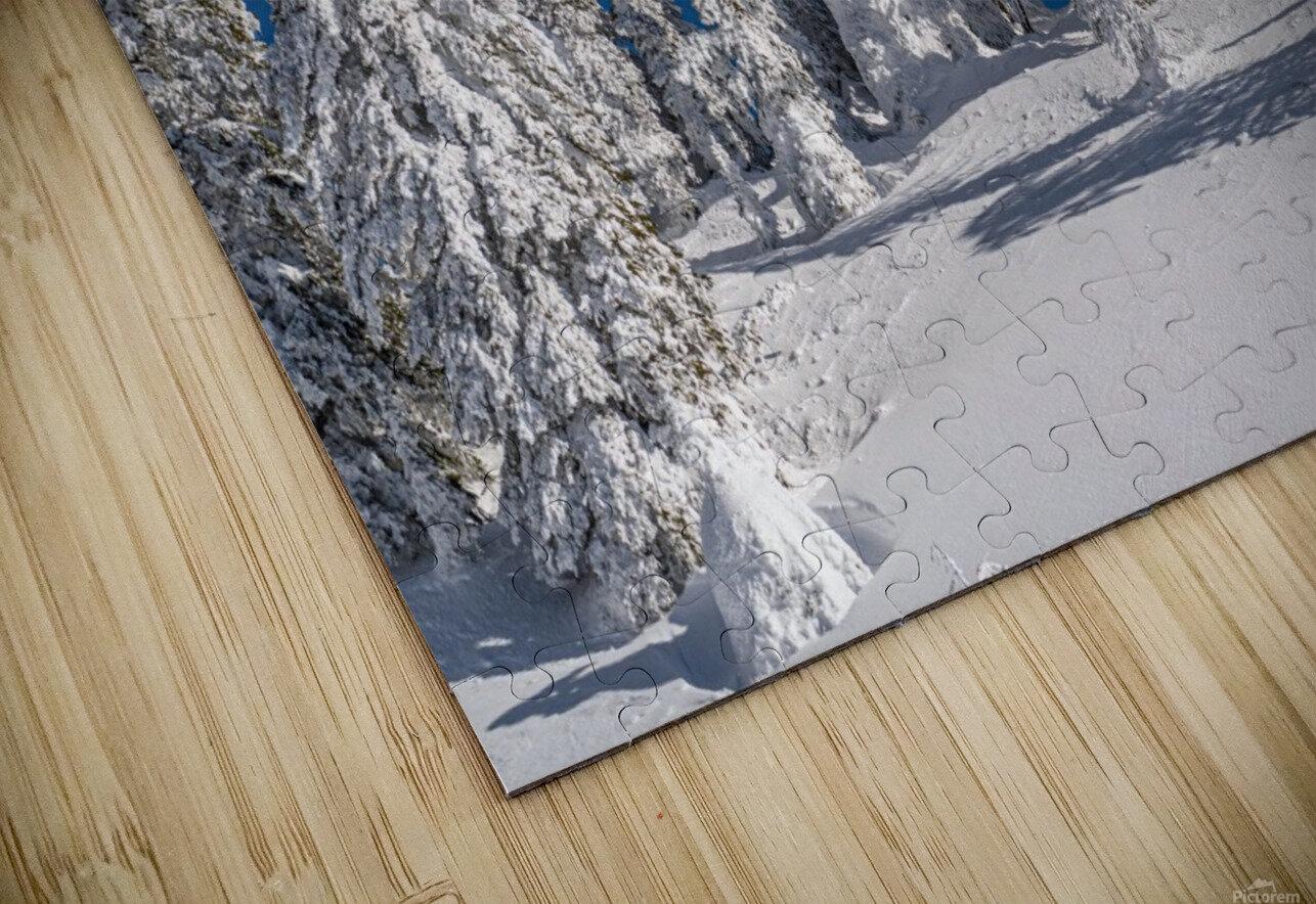 Alpine moon HD Sublimation Metal print
