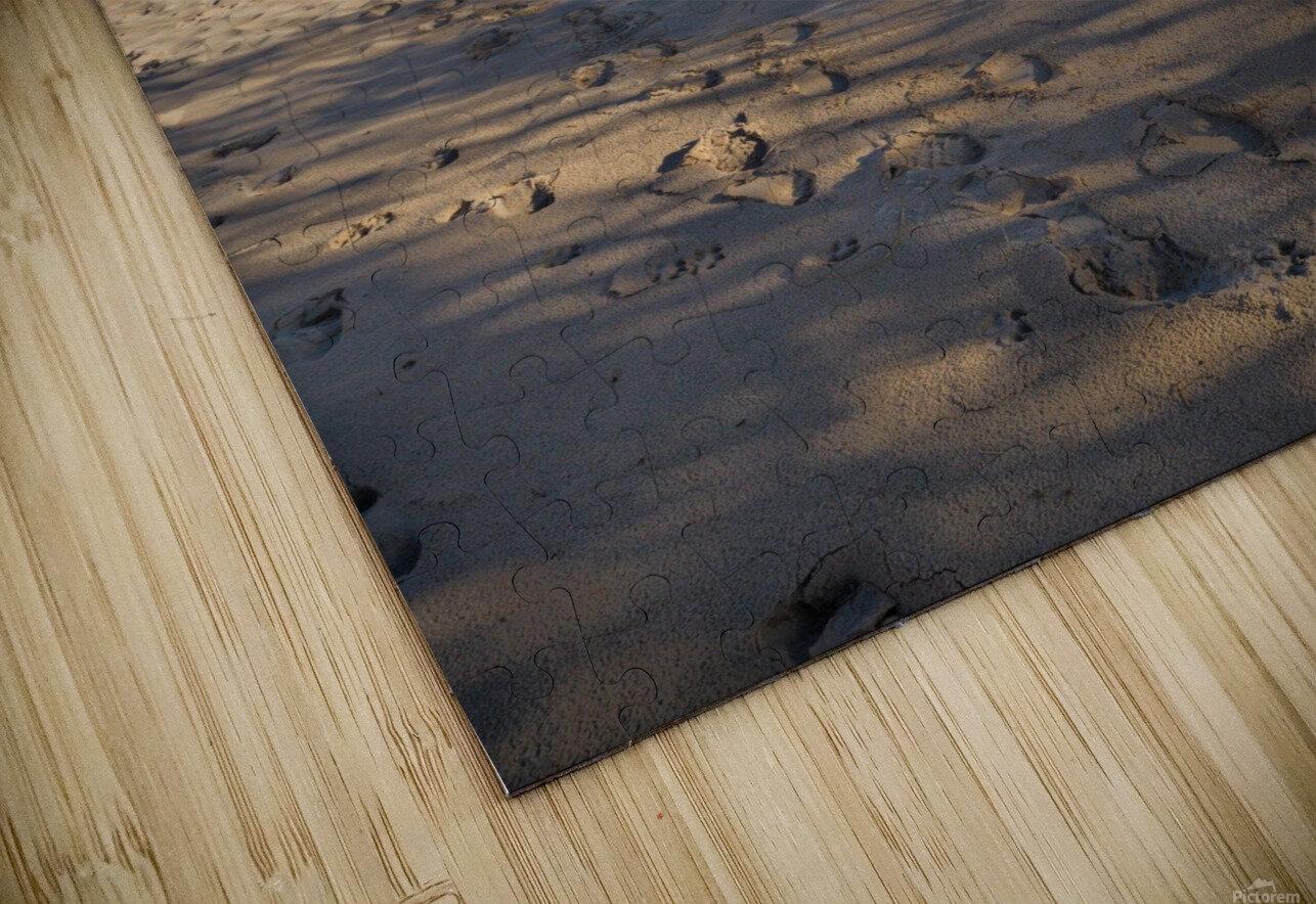 Little Sable ap 2442 HD Sublimation Metal print