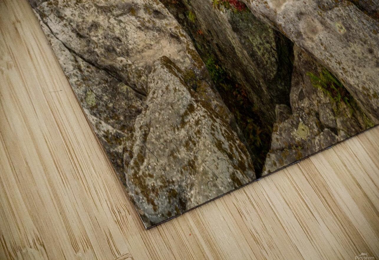 Bear Rocks Preserve apmi 1790 HD Sublimation Metal print