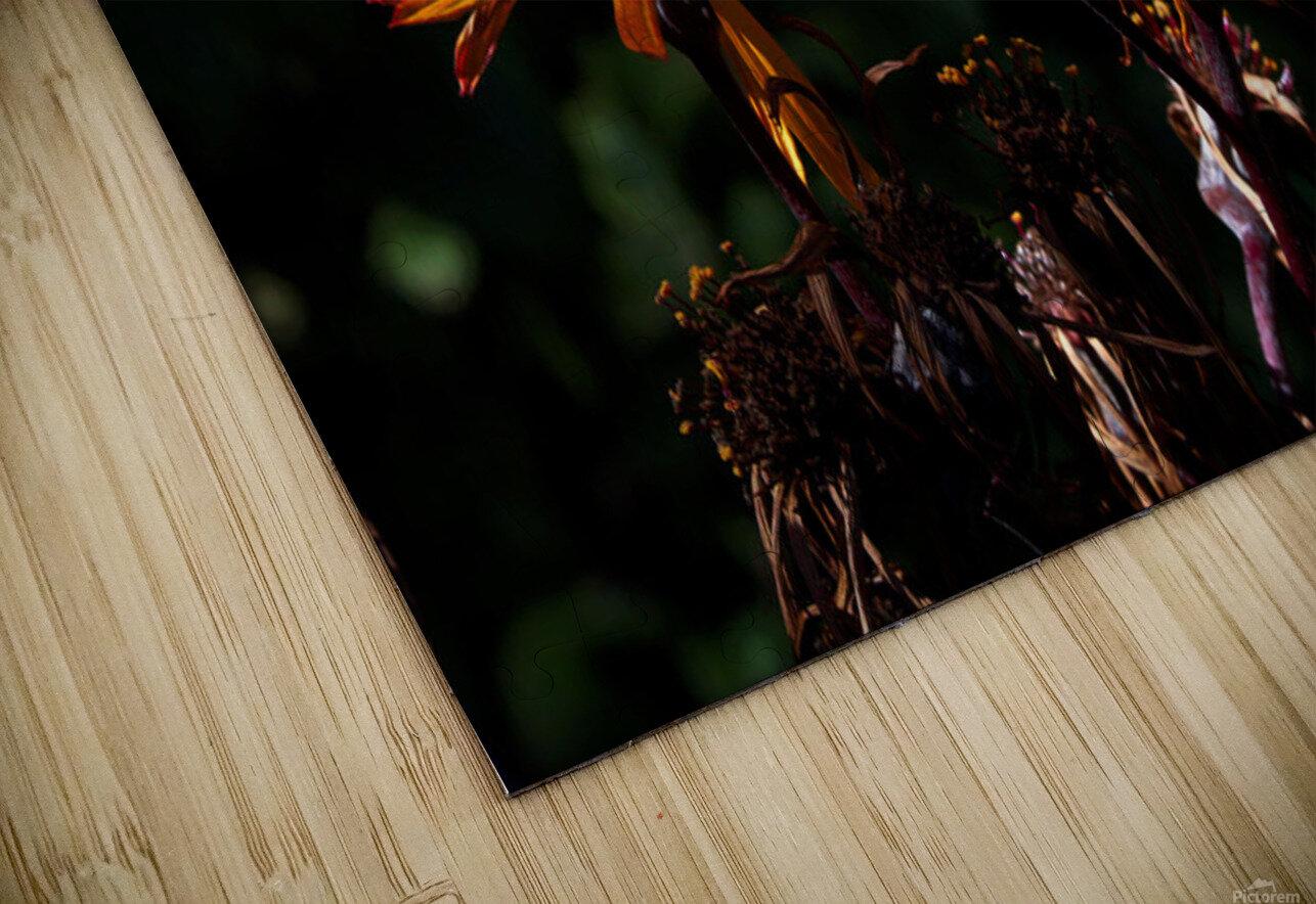 Fire Flower HD Sublimation Metal print