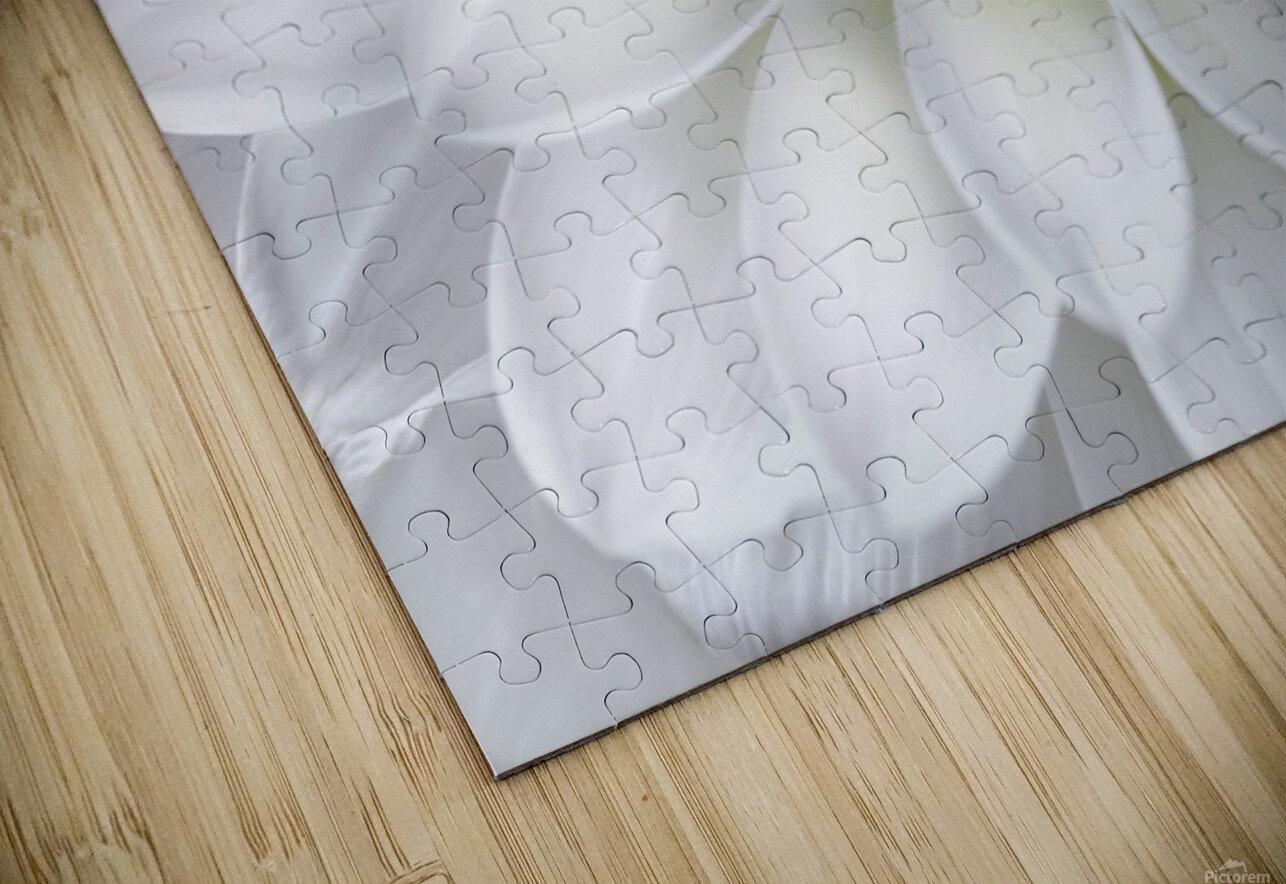 White Dahlia HD Sublimation Metal print
