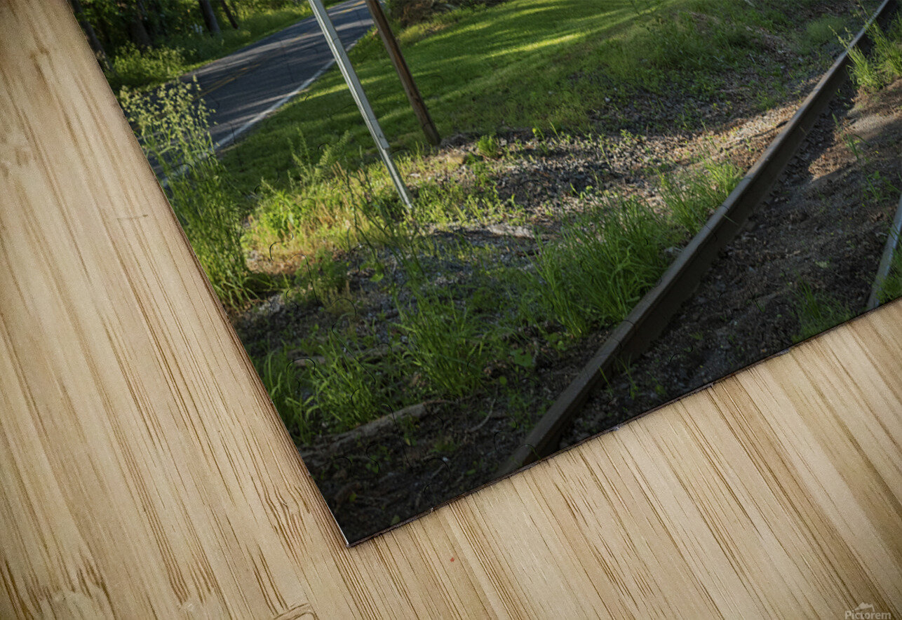 Country Life HD Sublimation Metal print