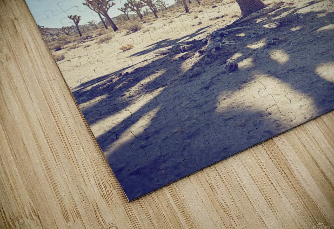 Joshua Tree National Park HD Sublimation Metal print