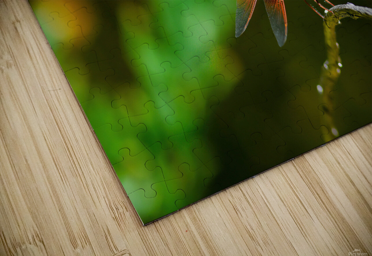 HEAR OUR VOICE collection 1-4 HD Sublimation Metal print