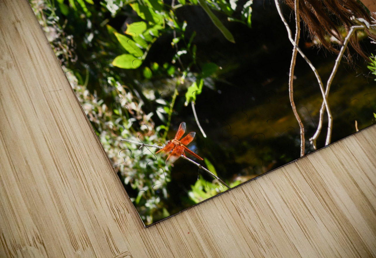 THE TINY MESSENGER collection 1-4 HD Sublimation Metal print