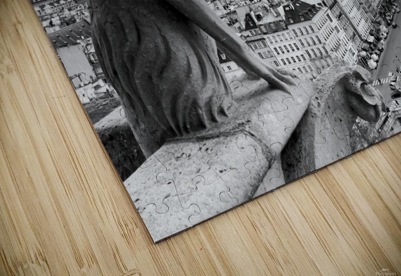 Notre Dame gargoyle Impression de sublimation métal HD