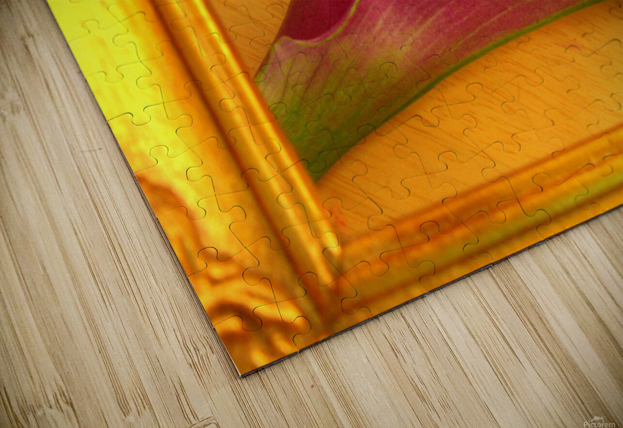 Gilded Lilly  HD Sublimation Metal print