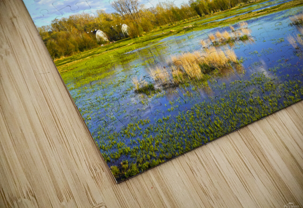 Beautiful Day at the Estuary 2 HD Sublimation Metal print