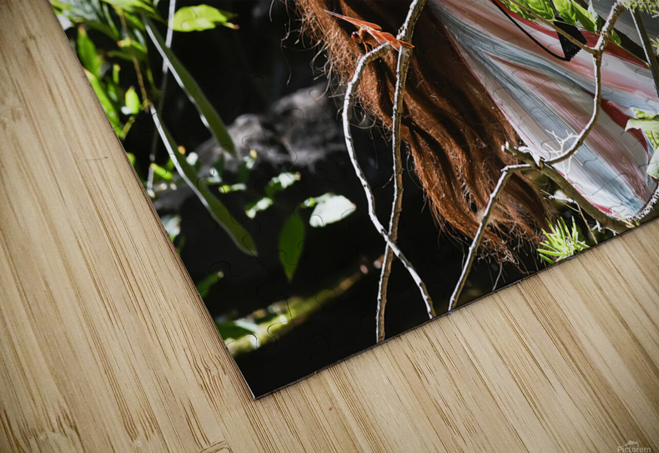 EVOKED BY NATURE Collection 2-4 HD Sublimation Metal print