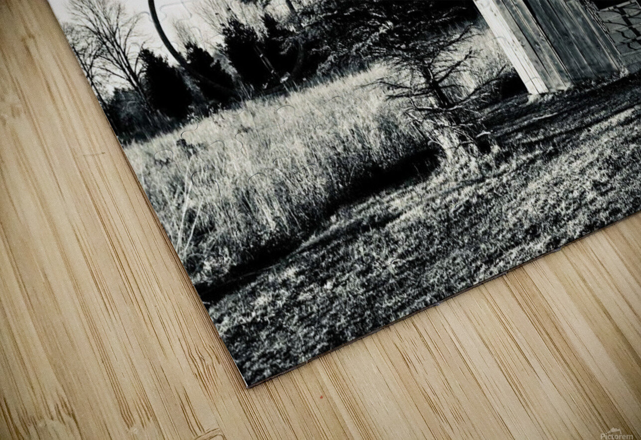 The Path Less Traveled HD Sublimation Metal print