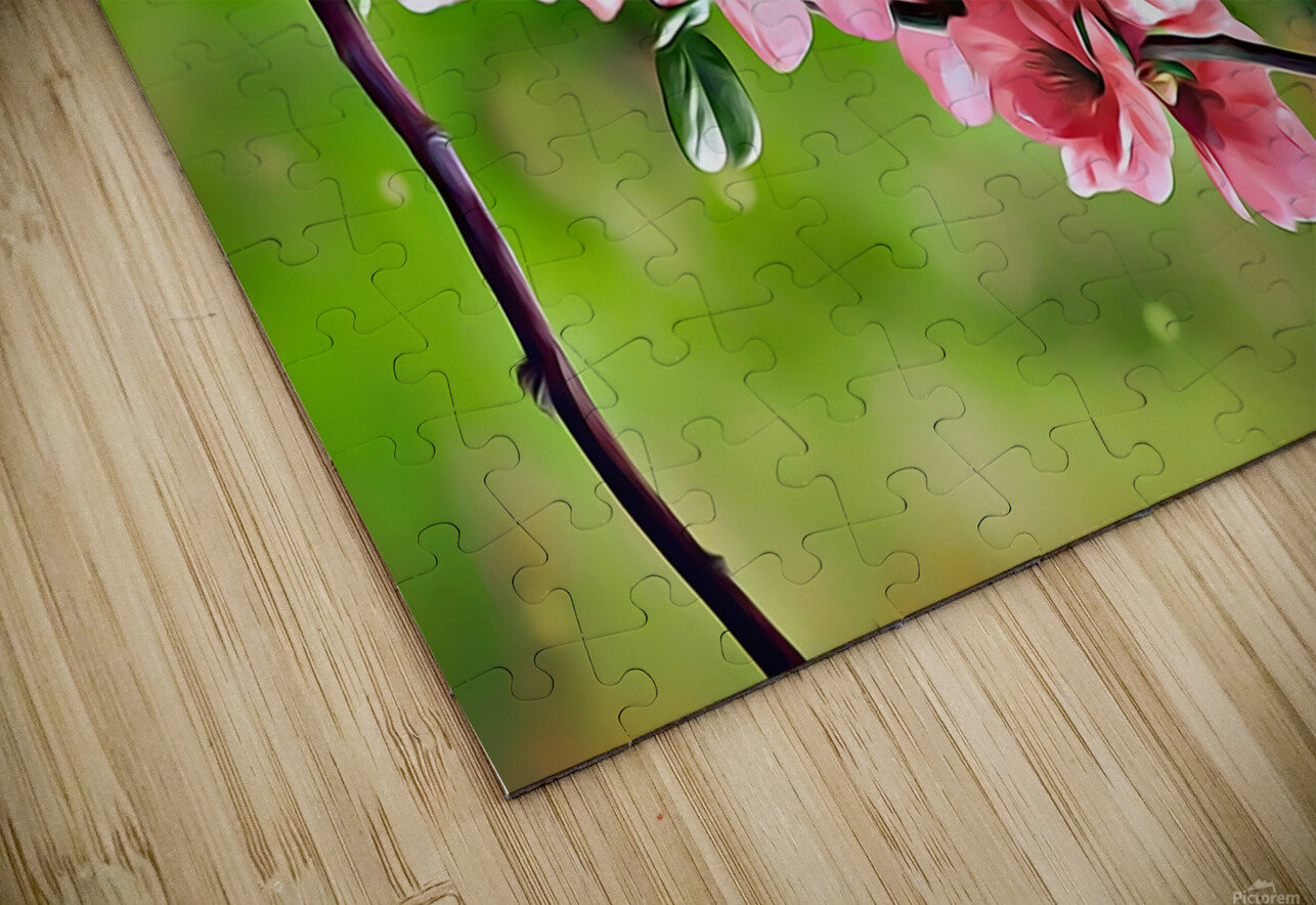 A Spring Friendship HD Sublimation Metal print