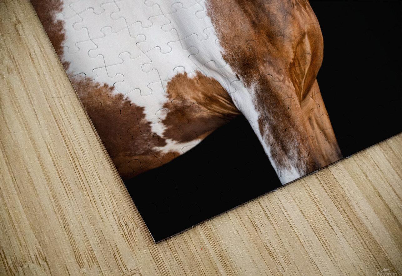Paint Horse Portrait - Comanche HD Sublimation Metal print