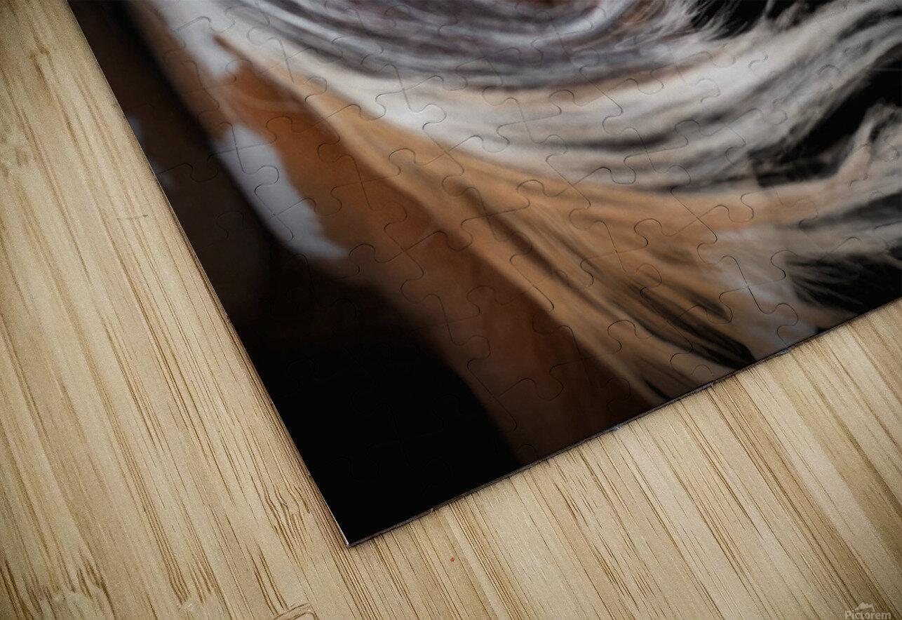 Paint Horse Portrait HD Sublimation Metal print