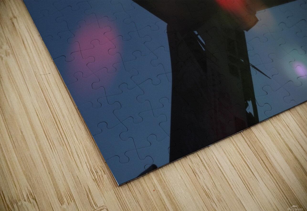 DSCN2528 HD Sublimation Metal print