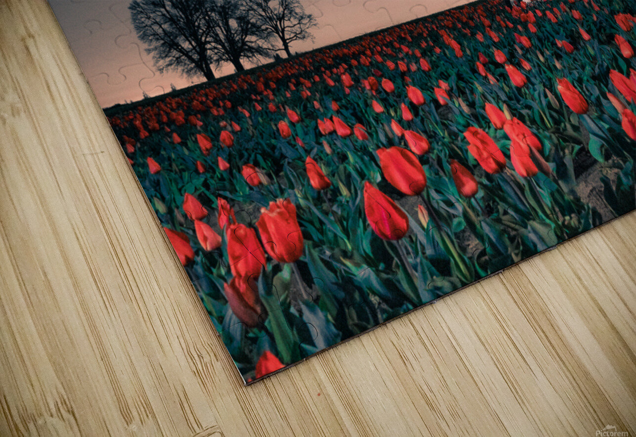 Tractors & Tulips HD Sublimation Metal print