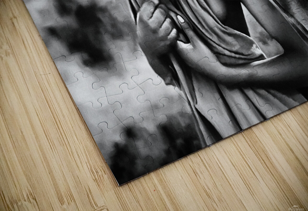 africa 2 HD Sublimation Metal print