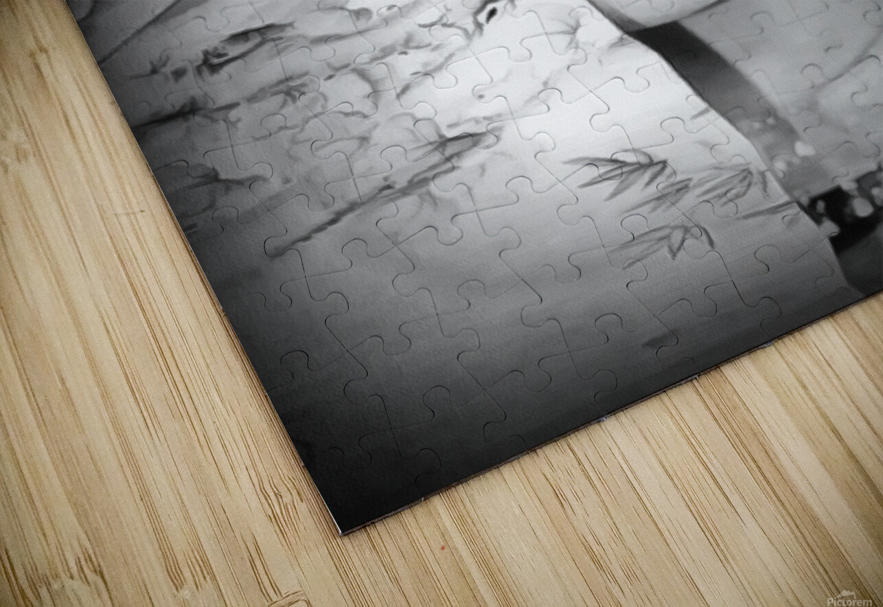 asia 1 HD Sublimation Metal print