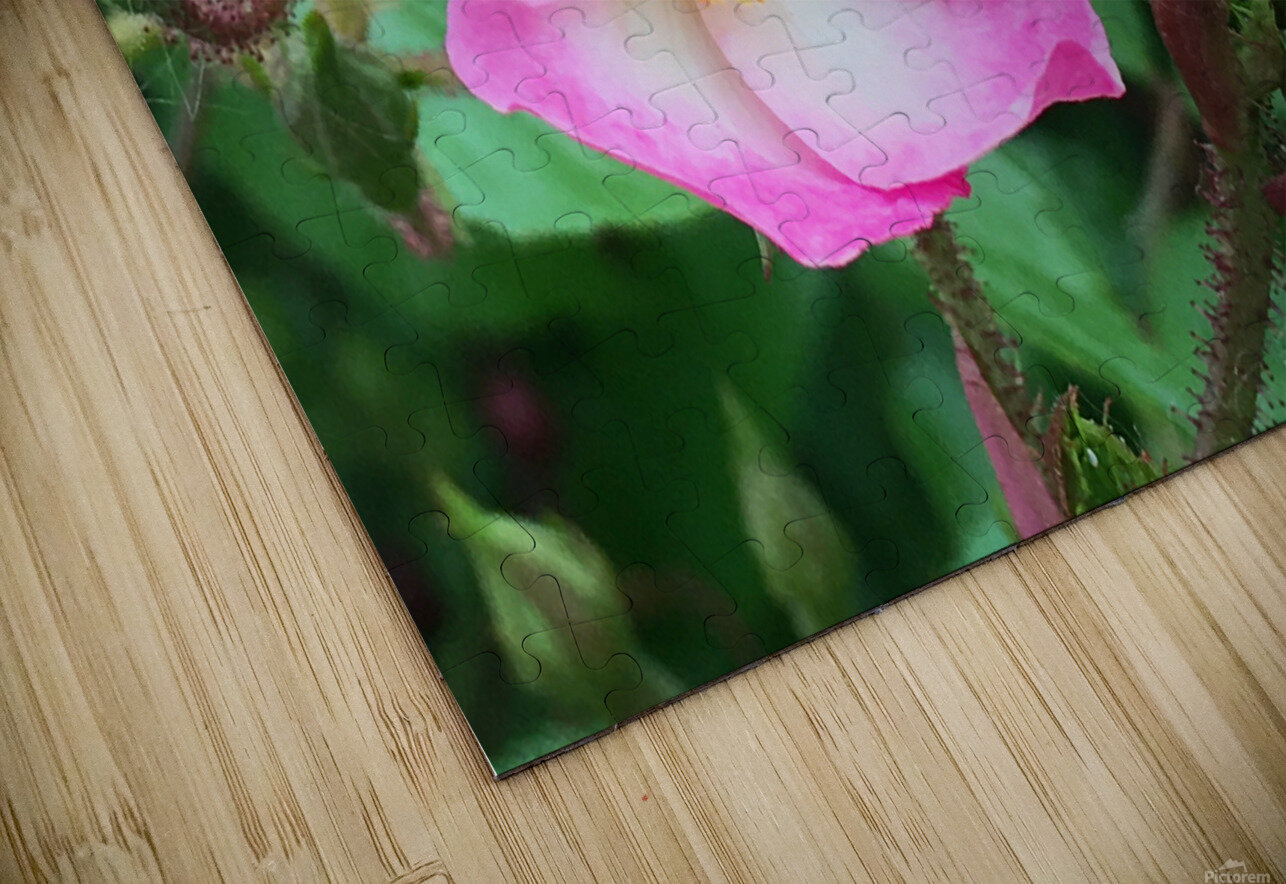The Bloom HD Sublimation Metal print
