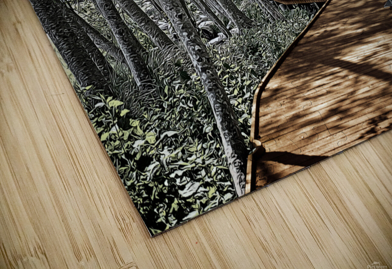 Boardwalk in the Woods HD Sublimation Metal print
