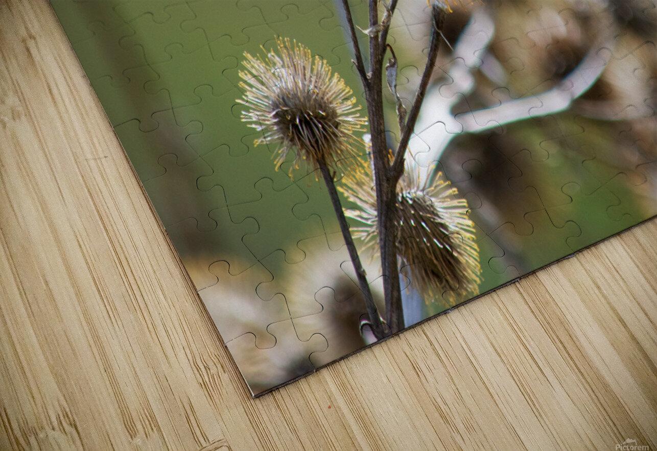 Burdock Bouquet HD Sublimation Metal print